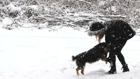 Little girl enjoying winter with  dog. stock footage