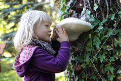 Little girl examining large Tinder fungus royalty free stock photo