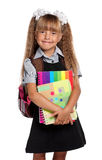 Little girl with exercise books Stock Image