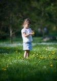 Little girl exploring dandelion Royalty Free Stock Image
