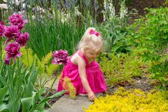 Little girl exploring a sensory garden in Spring royalty free stock photography
