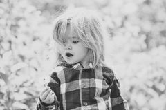 Little Girl Face Portrait In Your Advertisnent. Freedom, Activity, Discovery Royalty Free Stock Photos