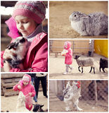 Little girl on a farm with animals Stock Image