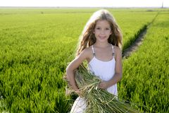 Little girl farmer on rice fields green outdoor Royalty Free Stock Images