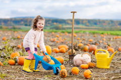 Little girl farming on pumpkin patch Royalty Free Stock Image