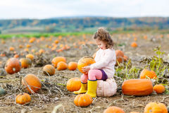 Little girl farming on pumpkin patch Royalty Free Stock Images