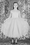 Little girl in fashionable dress, prom. Fashion model on silver background, beauty. Child girl in stylish glamour dress Royalty Free Stock Photo