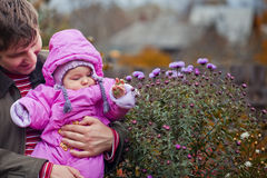 Little girl in father's hands. Playing with flowers royalty free stock photography