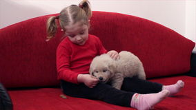 Little girl feed dog stock video