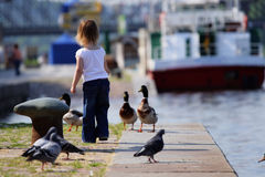 Little girl feedind wild ducks at landing stage. Little beauty girl feedind wild ducks at landing stage or river embankment at sunny day. We see ship not in royalty free stock photos