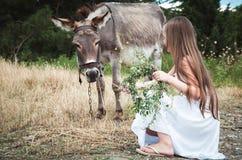 Little girl feeding donkey Stock Photography
