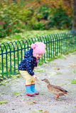Little girl feeding duck Royalty Free Stock Image