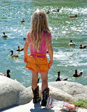 Little girl feeding ducks 1. Little girl feeding ducks in a lake royalty free stock image