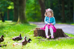 Little girl feeding ducks in a park. Little girl feeding duck in a summer park. Children feed birds and animals. Child playing outdoors. Kids play in sunny royalty free stock photo
