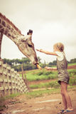 Little girl feeding a giraffe at the zoo Stock Photos