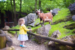 Little girl feeding a goat Stock Images