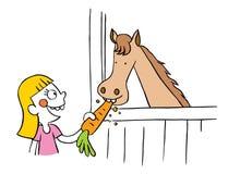 Little girl feeding horse carrot Royalty Free Stock Photo