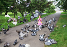 Little girl feeding pigeons. Royalty Free Stock Images