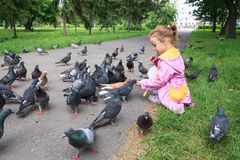 Little girl feeding pigeons. Royalty Free Stock Photo
