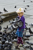 Little girl feeding pigeons Stock Photo