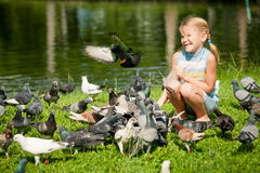 Little girl feeding pigeons in the park Royalty Free Stock Photos