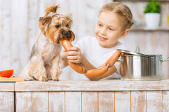 Little girl is feeding sausages to her dog. Stock Photo