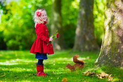 Little girl feeding a squirrel in autumn park Royalty Free Stock Photo