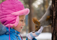 Little Girl Feeding a Squirrel in the Winter Forest. Stock Photography
