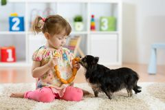 Free Little Girl Feeds Dog On Floor In Room Royalty Free Stock Photography - 103250747