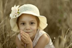 Little girl in fied Stock Photos