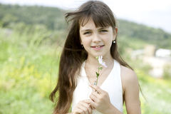 Little girl in field Stock Photography