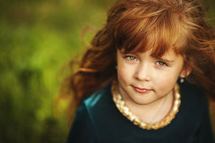 Little girl in the field Royalty Free Stock Image
