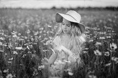 Little girl in a field of flowers Royalty Free Stock Photo