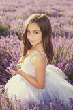 Little girl in a field of lavender. Copy space stock image