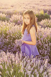 Little girl in a field of lavender. Copy space stock photos