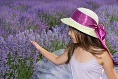 Little girl in a field of lavender. Little girl with a hat in a field of lavender royalty free stock photography
