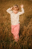Little girl in the field Stock Images
