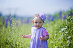 Little girl in a field Royalty Free Stock Photos