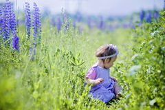 Little girl in a field Stock Photo