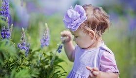 Little girl in a field Stock Photo