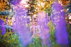 Little girl in a field Stock Image
