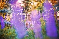 Little girl in a field Stock Image