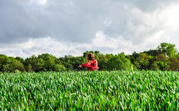 Little girl in a field of rye Royalty Free Stock Photography
