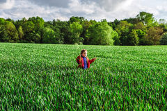 Little girl in a field of rye Royalty Free Stock Photo