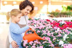 Little girl and florist watering flowers Stock Photos