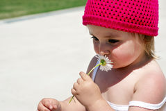A little girl with flower Royalty Free Stock Images