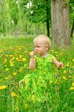 Little girl with flower Stock Image