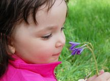 Little girl with flower Stock Images