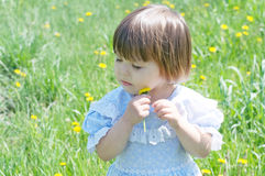 Little girl with flower enjoying nature in summer.  Cute child with dandelion flower Royalty Free Stock Images