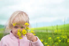 Little girl  flower in field Stock Image